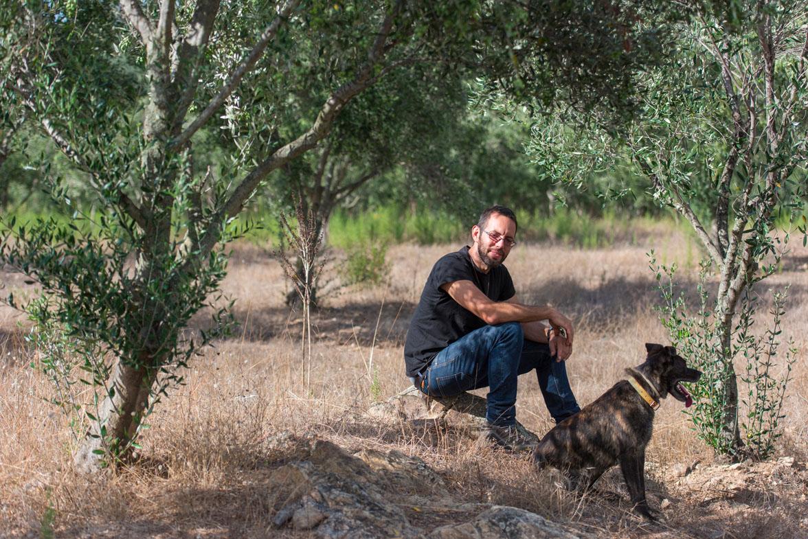Huile d'olive biologique de Corse